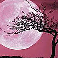 La Pleine Lune ROSE du 27 avril 2021