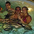 A minuit, dans la piscine !