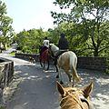 balade à cheval médiévale - Abbaye de Hambye (54)