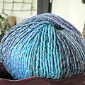 pelote bleu 2