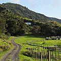 3 z'hemeryck en Nouvelle Zélande :(c'est fini) - chroniques d'un voyage improvisé.