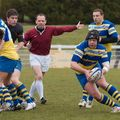 0742IMG_0524T