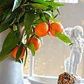 Déco, couleur et bouquet vitaminé