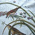 les oiseaux 2 jardin des contes marimerveille