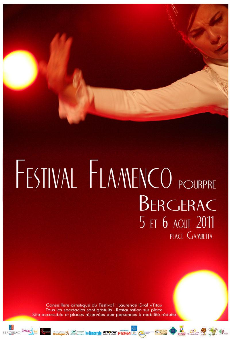 Affiche 2011web