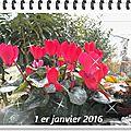 Le bouquet du premier vendredi de 2016