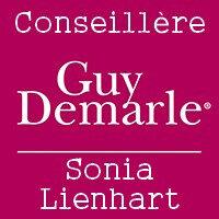guy-demarle-grand-public-logo-1428657019 Copie