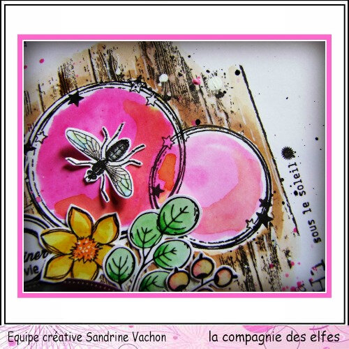 Page Sandrine VACHON dt LCDE avril (4)