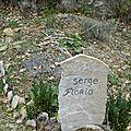 La tombe de Serge.