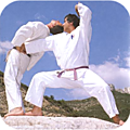 Bienvenue sur le blog du Jujutsu traditionnel de Signy-Le-Petit !