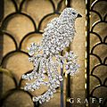 Graff. Diamonds precious <b>bird</b> <b>brooches</b>