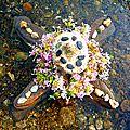 entre ciel et eau, dévotion yurtao
