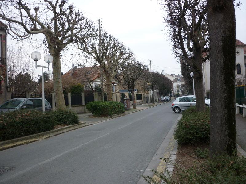 La rue Marceau, ses platanes.
