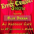 20- THE FIRST EFFET CRIQUET SHOW