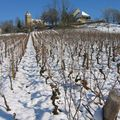 L'église et les vignes de Brainans sous la neige dec 08 - 006 (4)