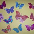 papillons !!