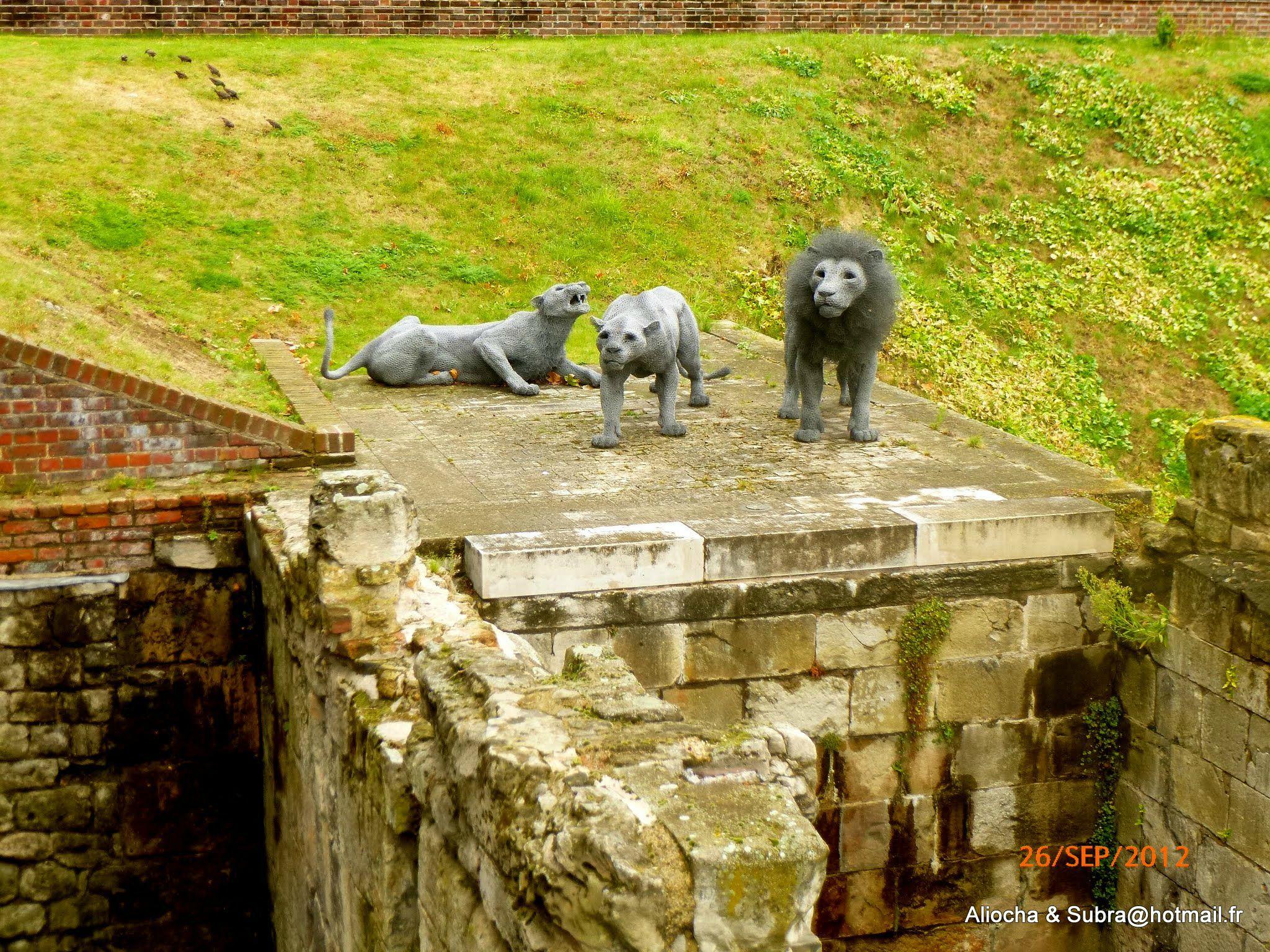 Les lions de la Tour de Londres