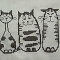 Une autre histoire de chats...