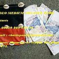Le bedou magique d'argent du médium paolo