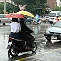 saison des pluie