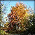paysages d'octobre (Ain)