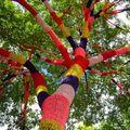 Tag de mailles ou yarn bombing, vers la canopée !
