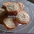 "Biscuit ""diamant"""