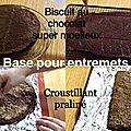 Base pour entremets : <b>Biscuit</b> moelleux au chocolat et croustillant praliné base pour entremets