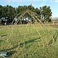 Construction d'une cabane en osier/saule
