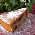 Gâteau aux fruits rouges ... sans fruits rouges !