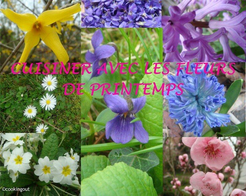 BANNIERE FLEURS DE PRINTEMPS