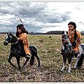 Galoper dans la plaine en toute liberté (+ fond d'écran) - Galloping in the plain freely (+ wallpaper)
