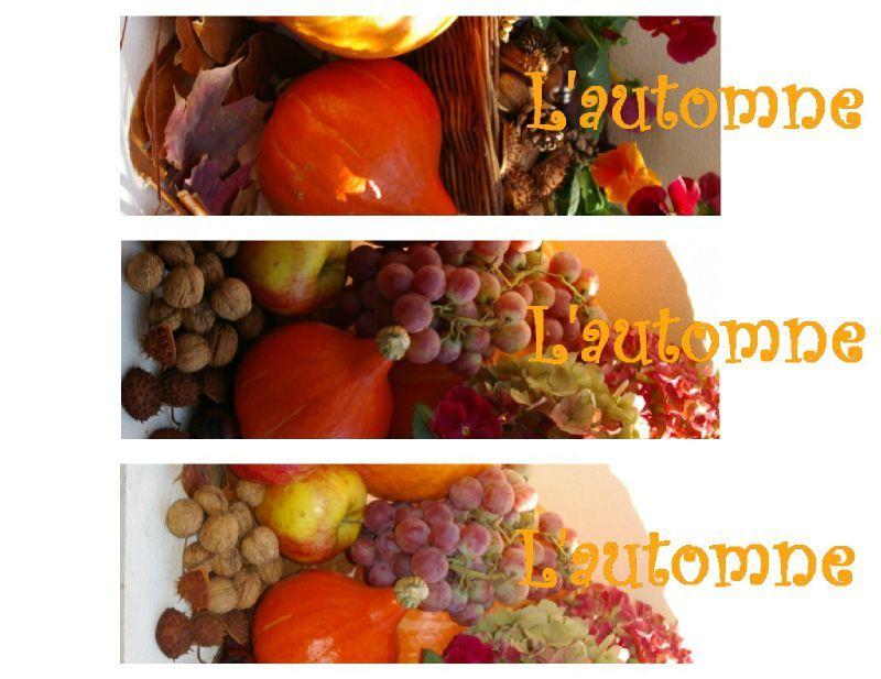 """Marques-pages """"aux couleurs de l'automne"""" à imprimer ..."""