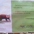 les pandas roux du parc de <b>cléres</b>