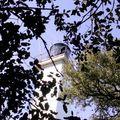 Le phare des dames. noirmoutier en île