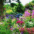 Vive le printemps! Période idéale pour les plantations!
