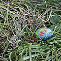 [pâques] chasse aux oeufs dans le jardin