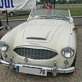 Austin Healey 100-<b>6</b> (1956-1959)