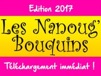 pavé Livres de Nanoug