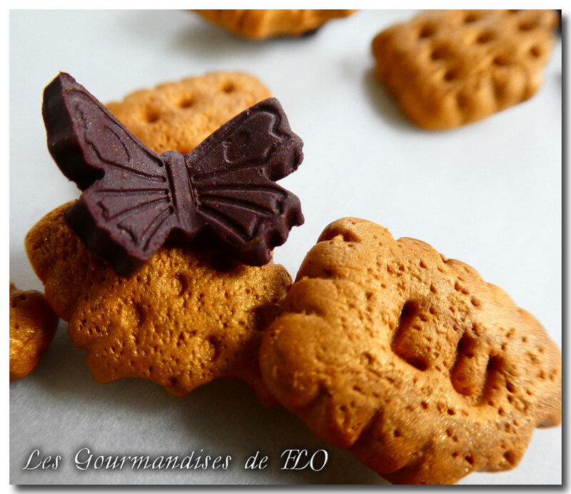 biscuit papillon choco 2