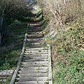 Promenades guides - 2014-11-08 - PB087024