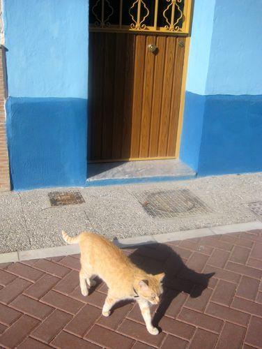 chat Malaga 5