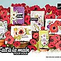 Nouveau <b>mini</b> <b>catalogue</b> !!