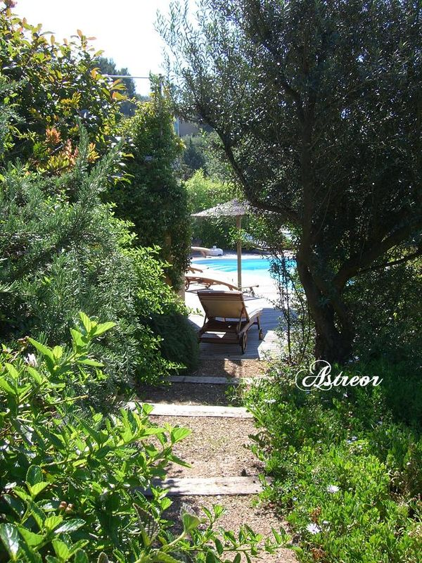 Provence 7