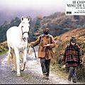Le cheval et le cinéma : into the west