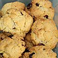 Cookies choco/coco/cranberries