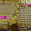 Programme des stages été 2011 @ la bull'dingue... accrochez-vous au pinceau !!!