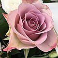 Fleurs en tous genres