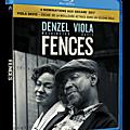 Revue de dvd sorties juillet 2017 : chronique d'un amour, fences, a ceux qui nous ont offensés, go fish, beyond flamenco