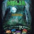 Les <b>Tortues</b> Ninja, la Trilogie
